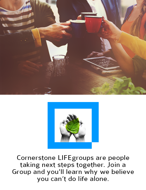 lifegroup-pic-ministries